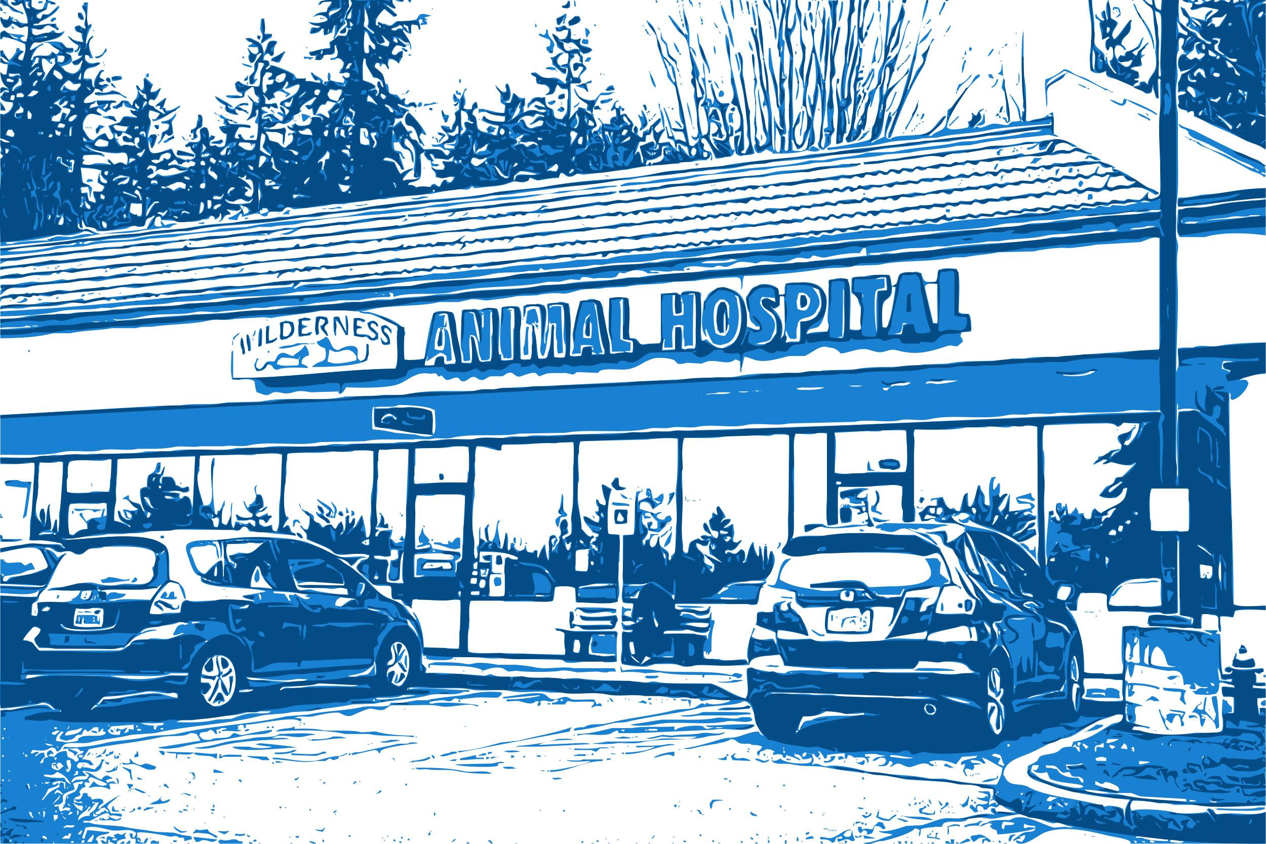 Exterior Wilderness Animal Hospital